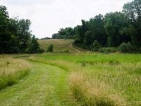 Mer cer Meadows